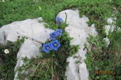 triglav-16-7-2010-050
